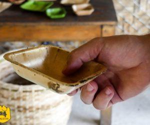 Initiative écolo : de la vaisselle 100% biodégradable fabriquée au Laos